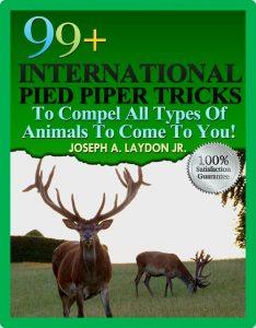 99 Pied Piper