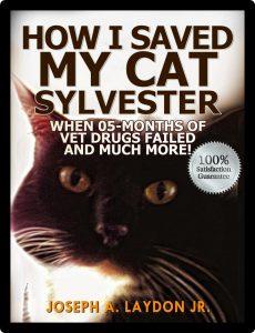 Sylvester KK
